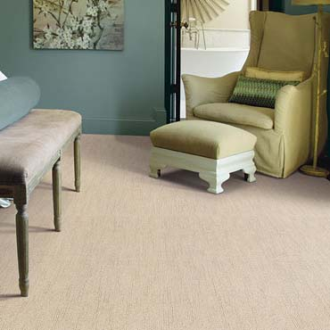 Caress Carpet by Shaw | Fort Lauderdale, FL